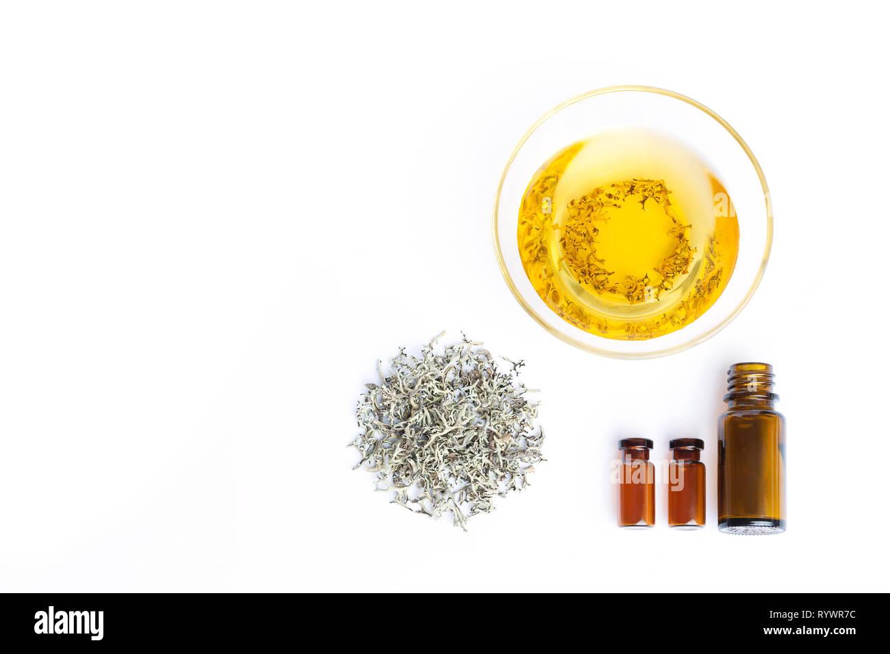 L'herbe sèche et de perfusion à base de mousse, l'herbe sèche et de perfusion à base de mousse. Pots en verre. Herb Alternative medicine. Isolé sur fond blanc. Photo Stock