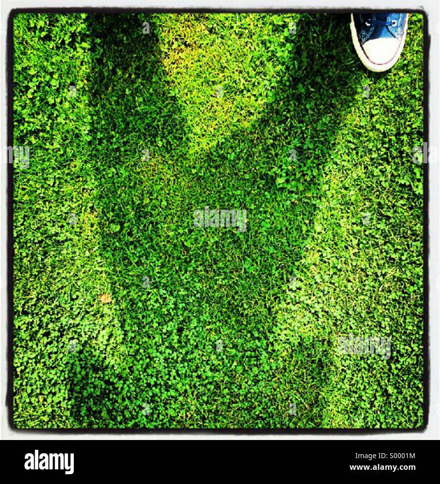 Moi (pied) et mon ombre Photo Stock