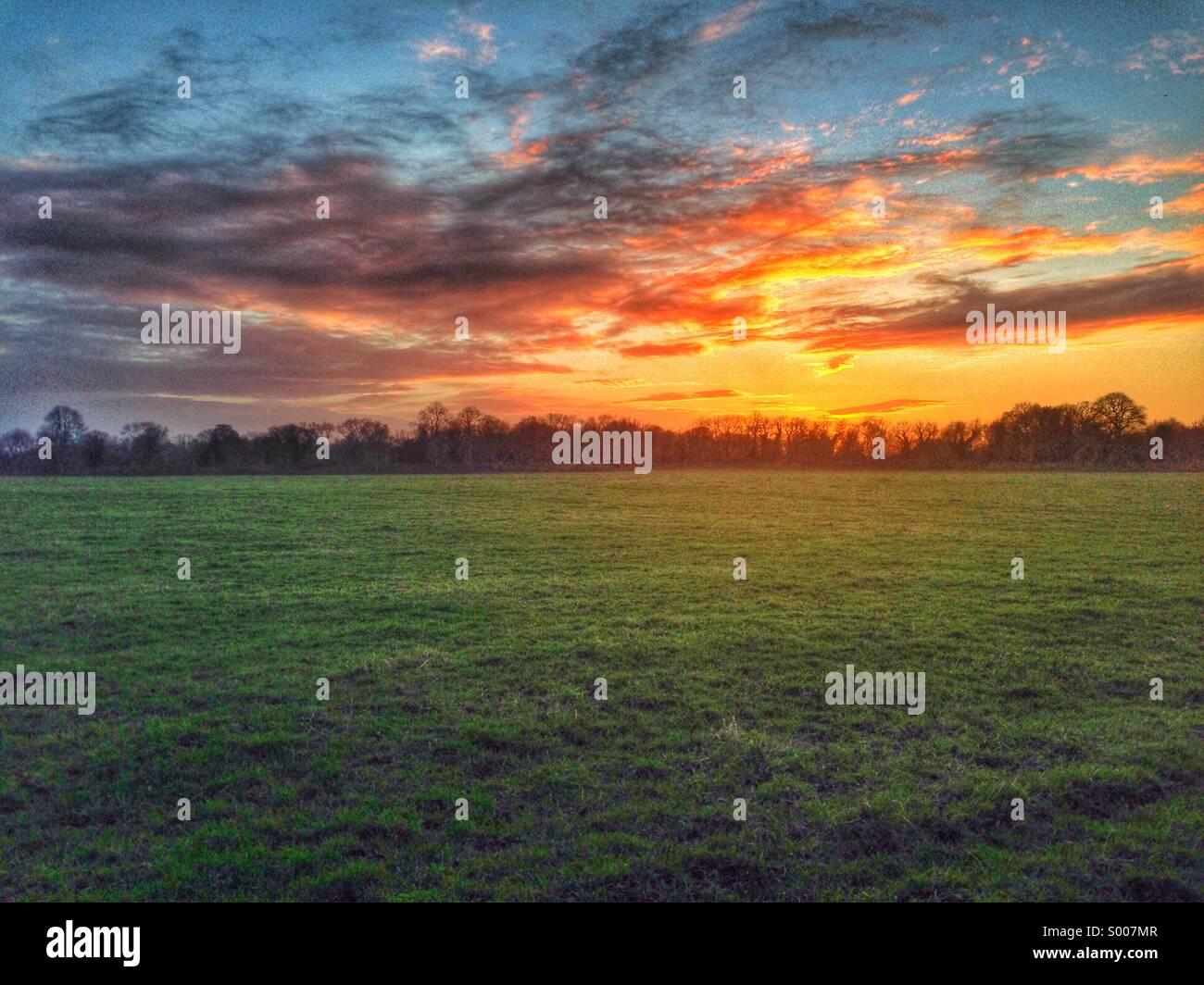 Coucher du soleil au-dessus des champs Photo Stock