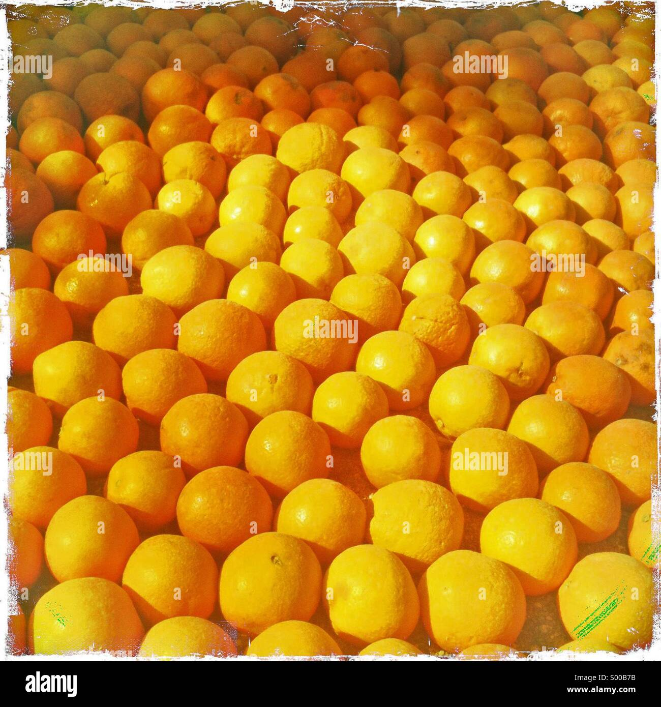 Des oranges sur l'affichage à l'fête du citron Menton France Photo Stock