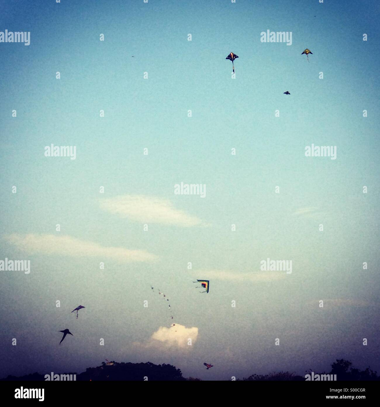 Cerfs-volants dans le ciel Photo Stock