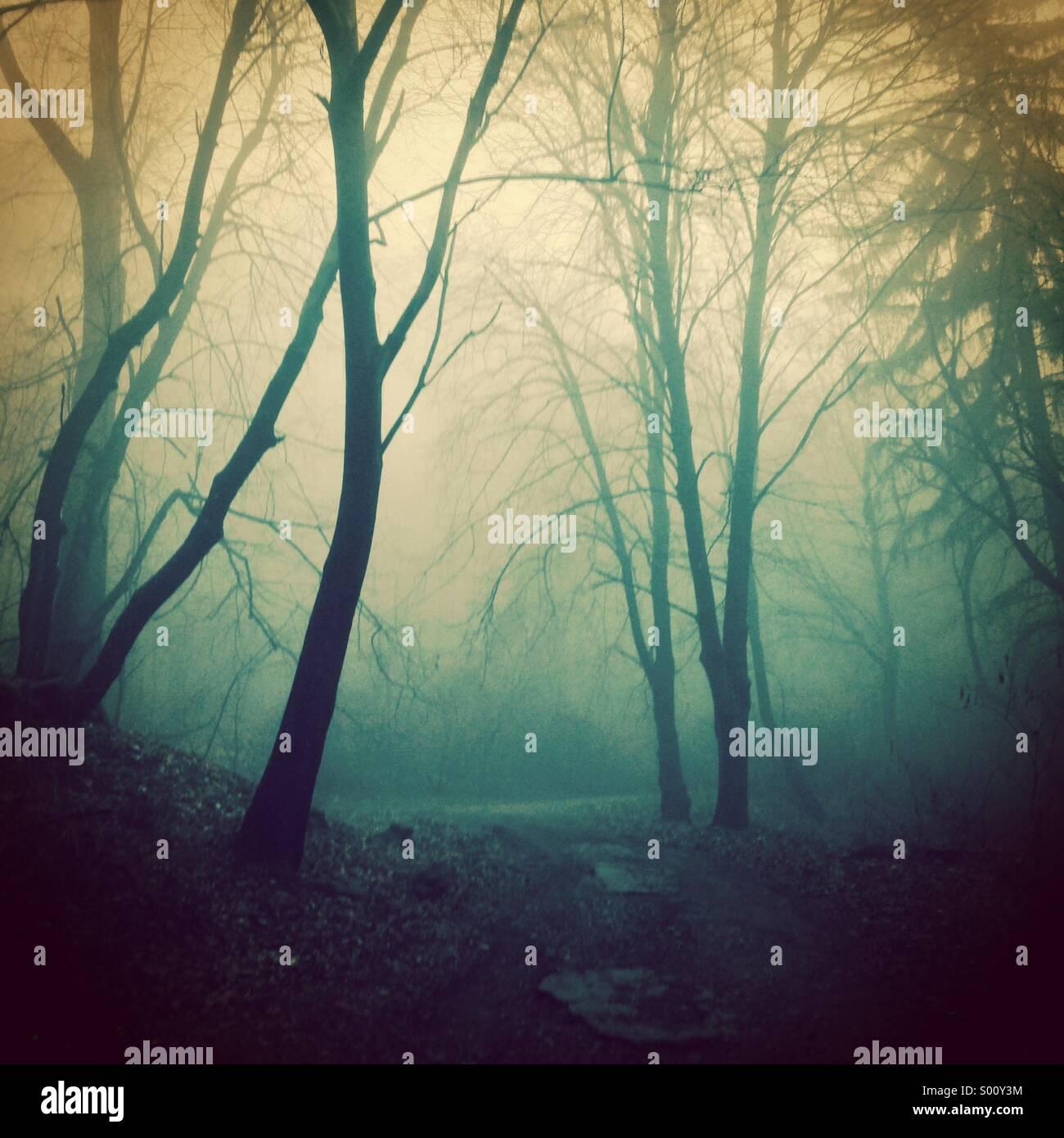 Conte de fées sombre Photo Stock
