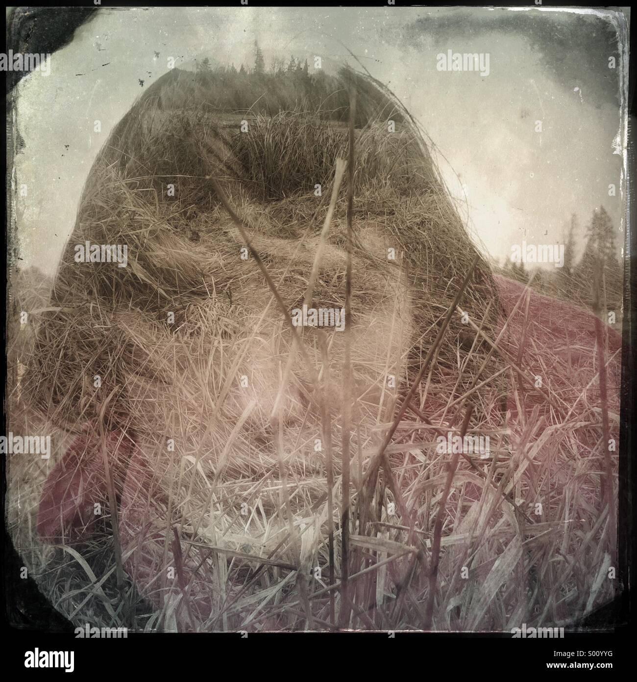 Country drive portrait d'une fille aux cheveux noirs. Une double exposition. Banque D'Images
