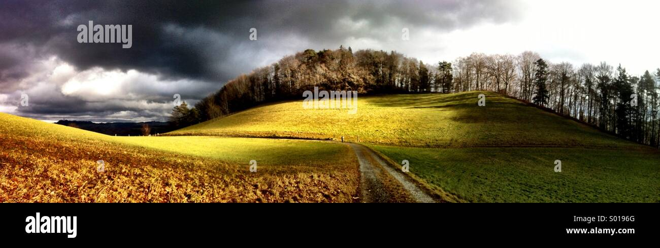 Panorama de prairies et d'arbres, Gurten, Berne Photo Stock
