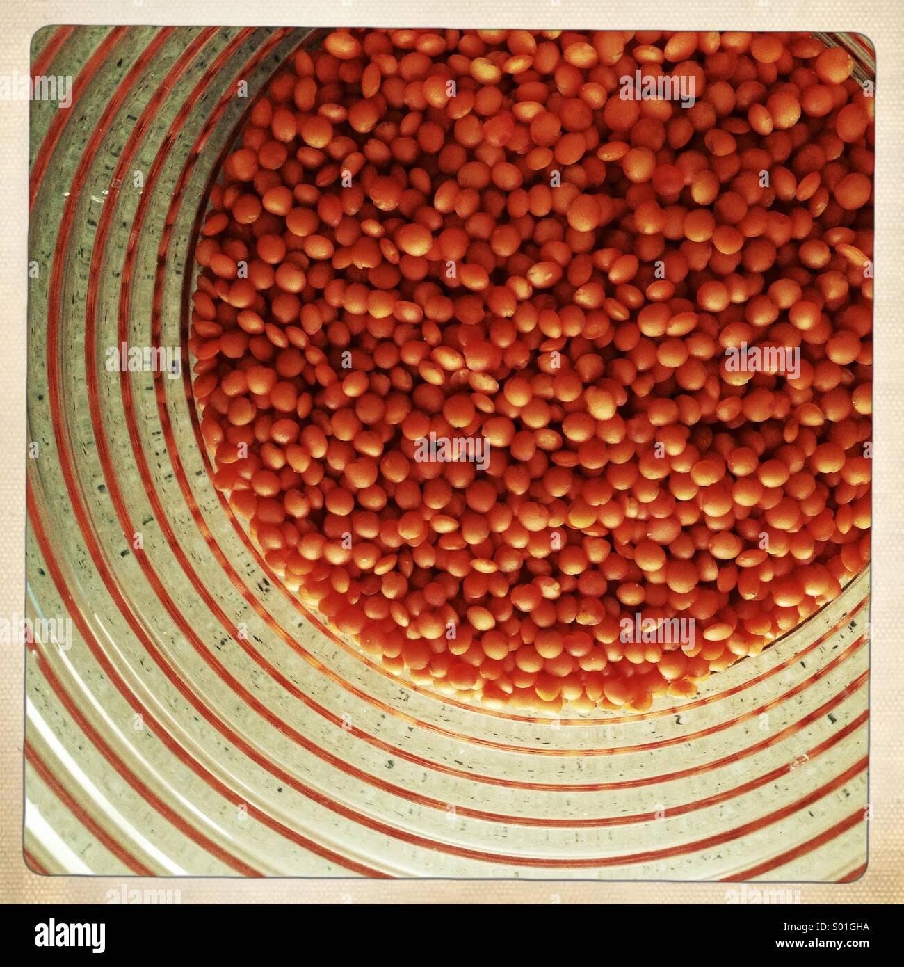 Les lentilles rouges dans un bocal Photo Stock