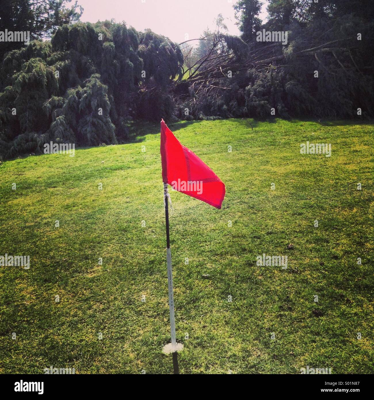 Hole-in-one Photo Stock