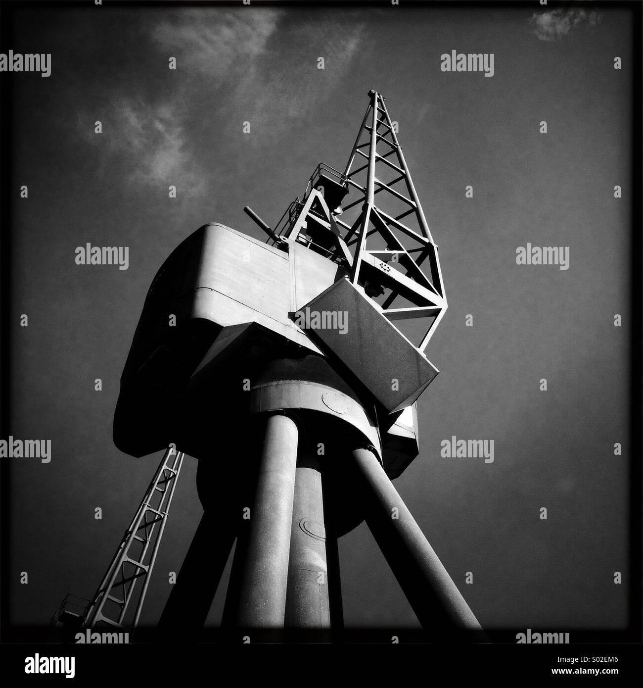 Crane ensoleillée Photo Stock