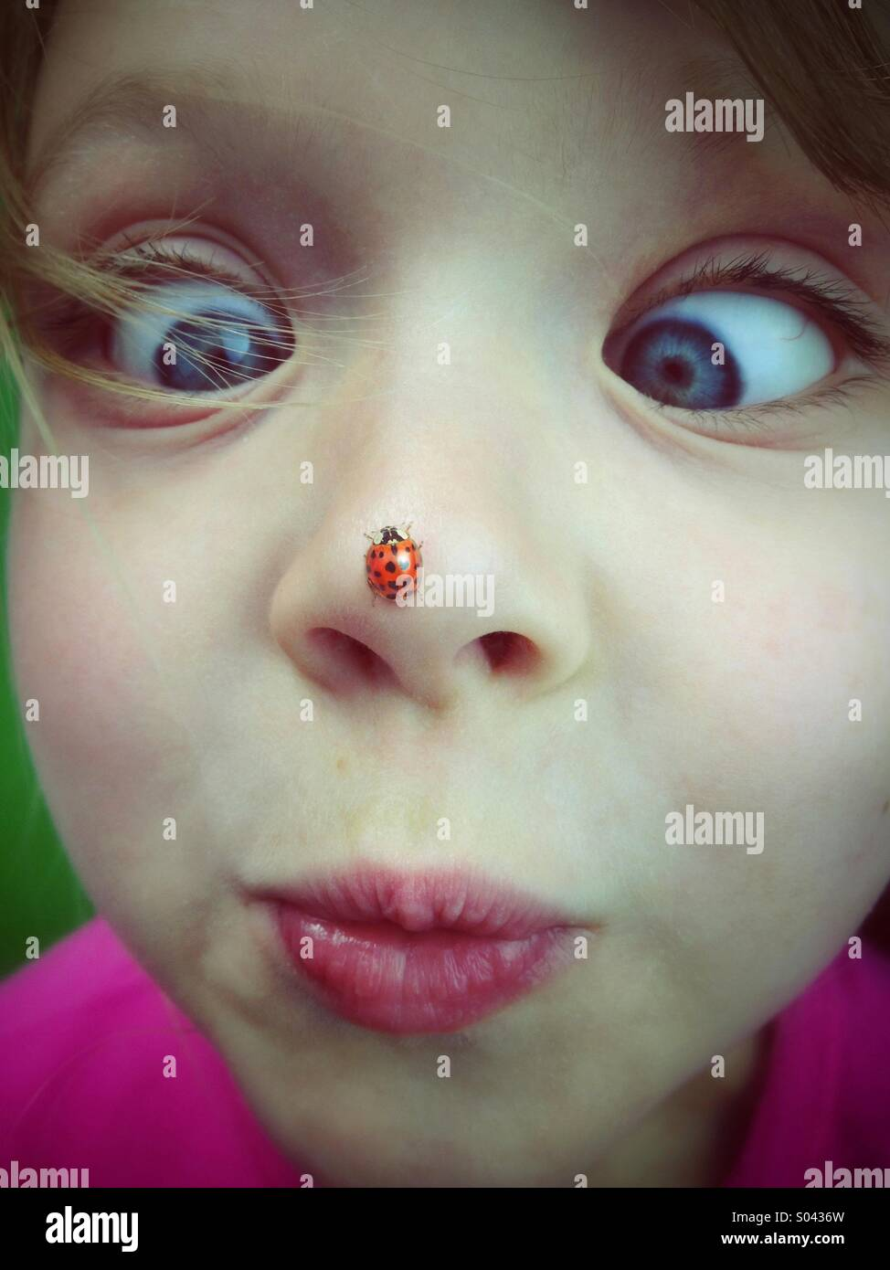 Petite fille avec coccinelle sur son nez Photo Stock