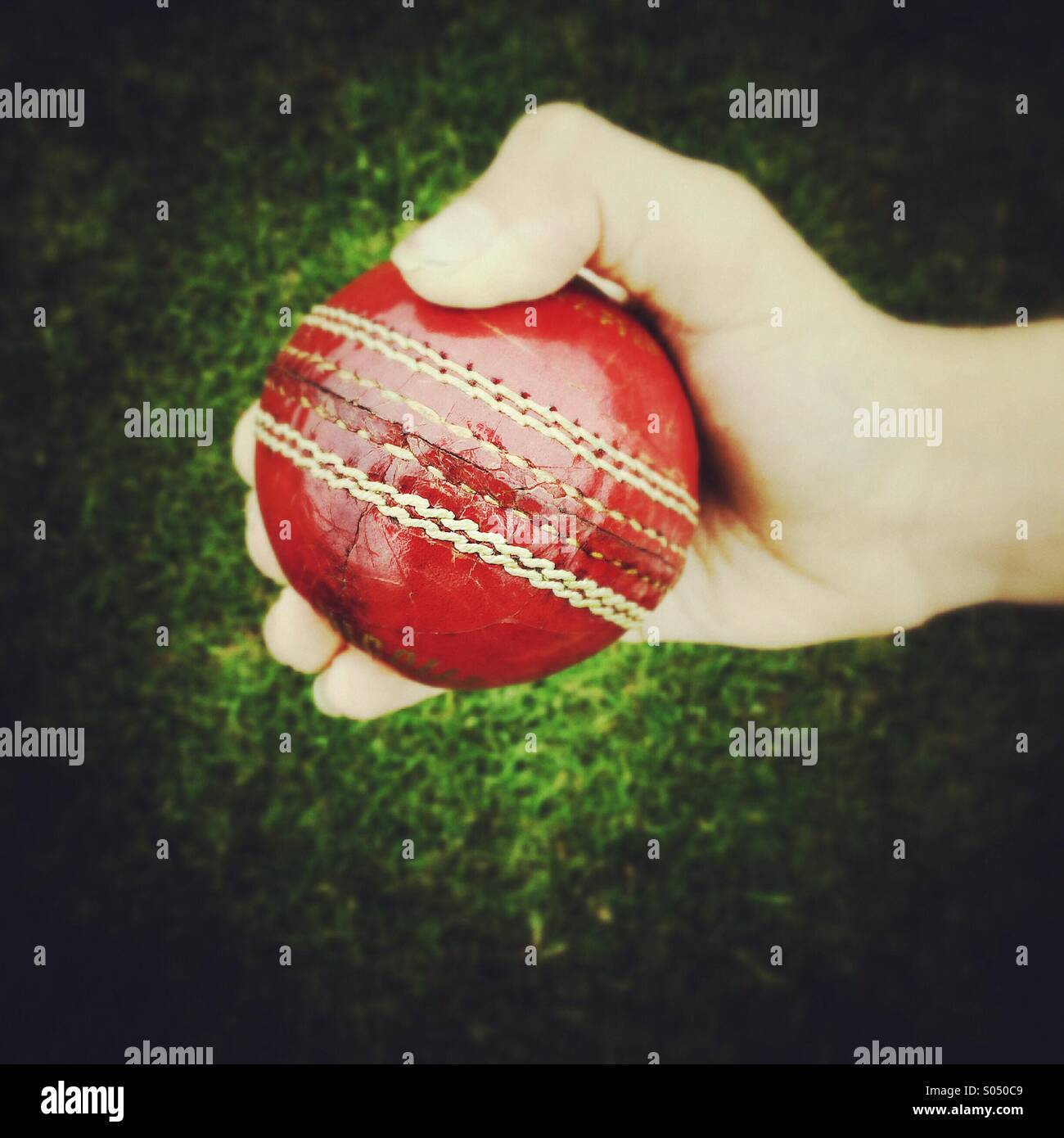 Tenant une balle de cricket Photo Stock