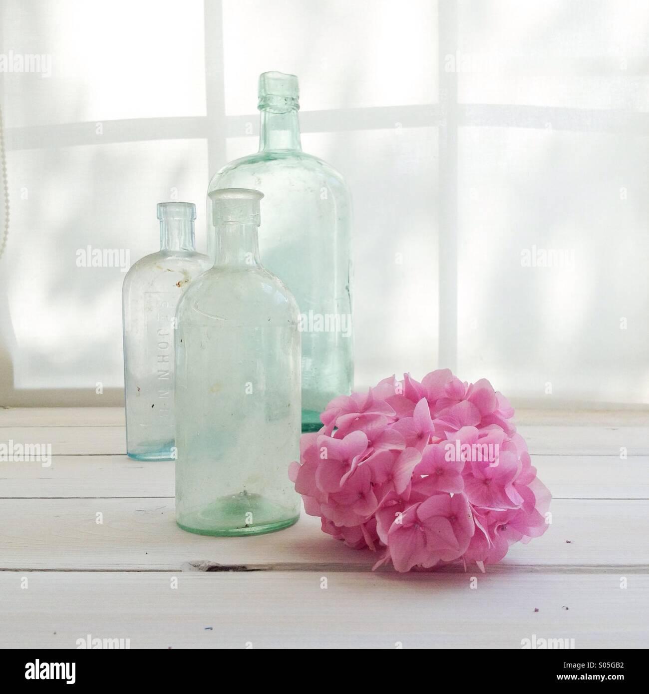 Bouteilles en verre vintage avec hortensia rose sur appui de fenêtre baignée de lumière Photo Stock