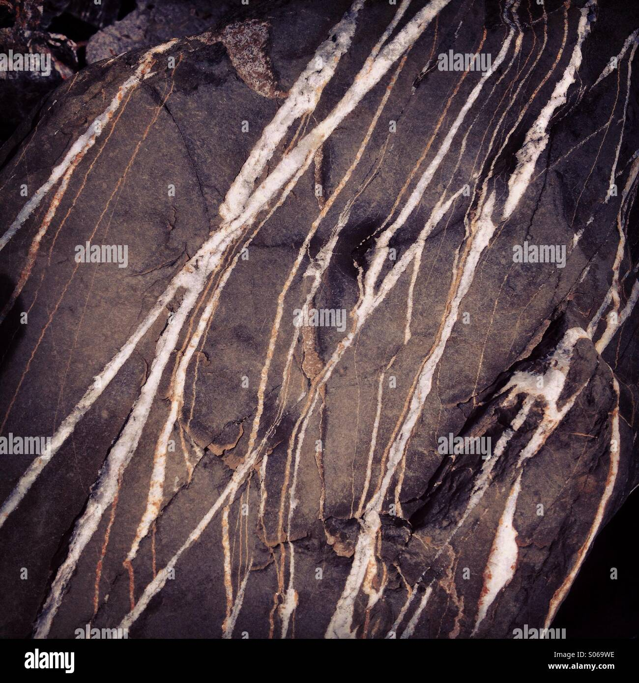 Striped rock formation, Ecosse Photo Stock