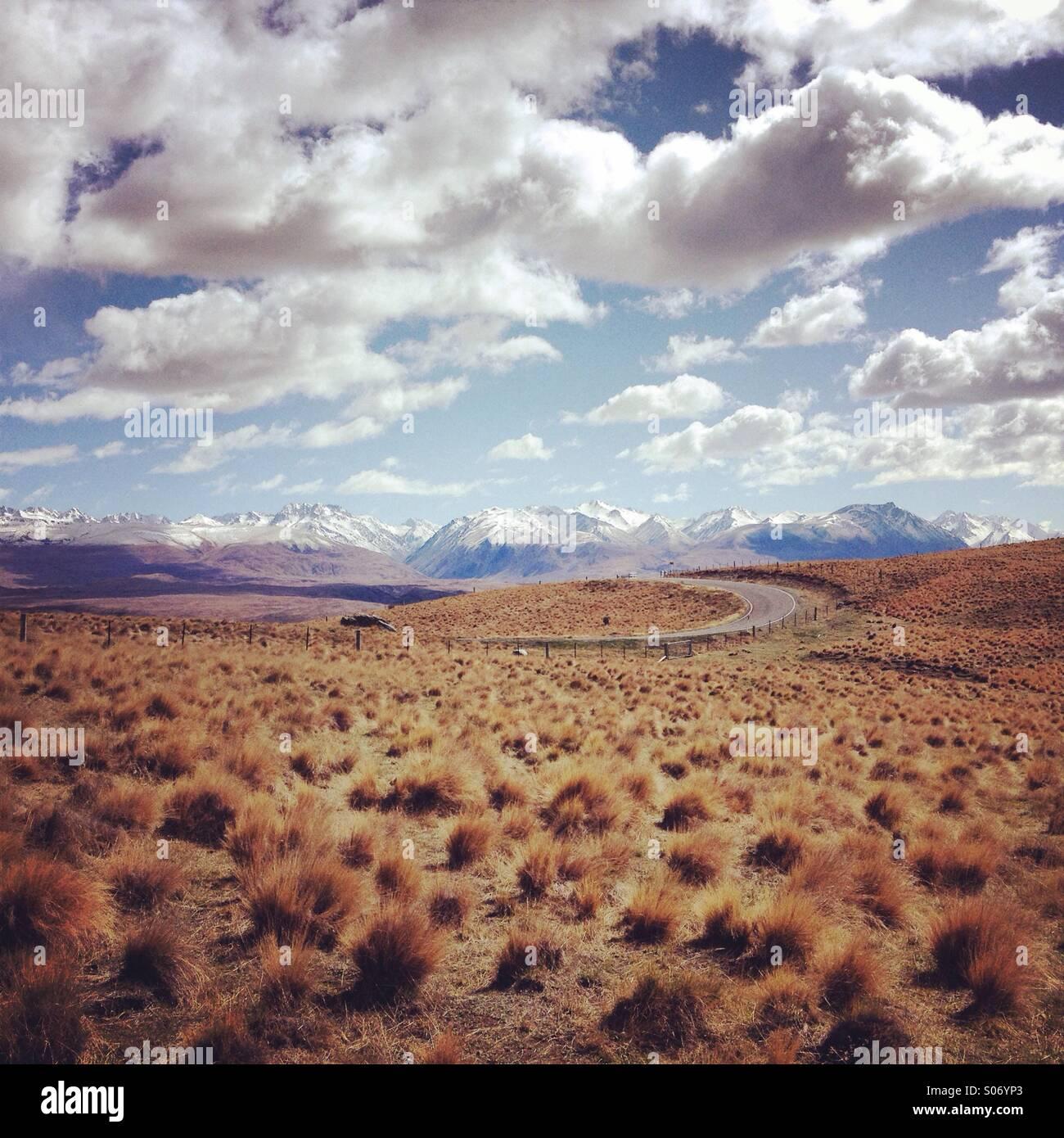 Les prairies en Nouvelle-Zélande avec une chaîne de montagnes en arrière-plan Photo Stock