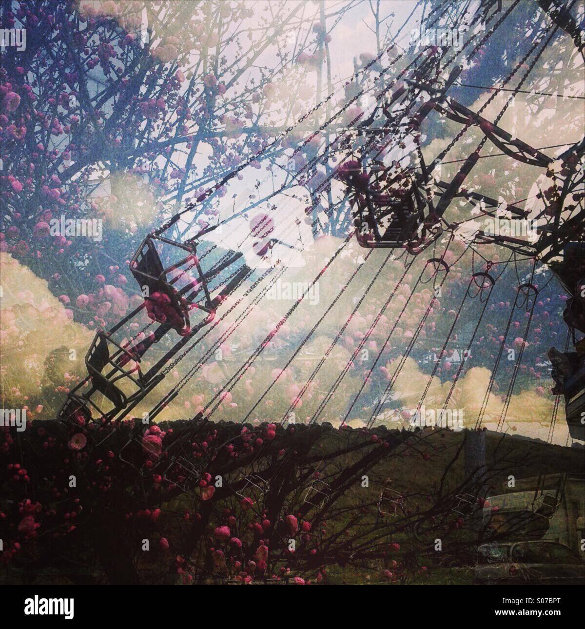 Carousel et fleurs Photo Stock