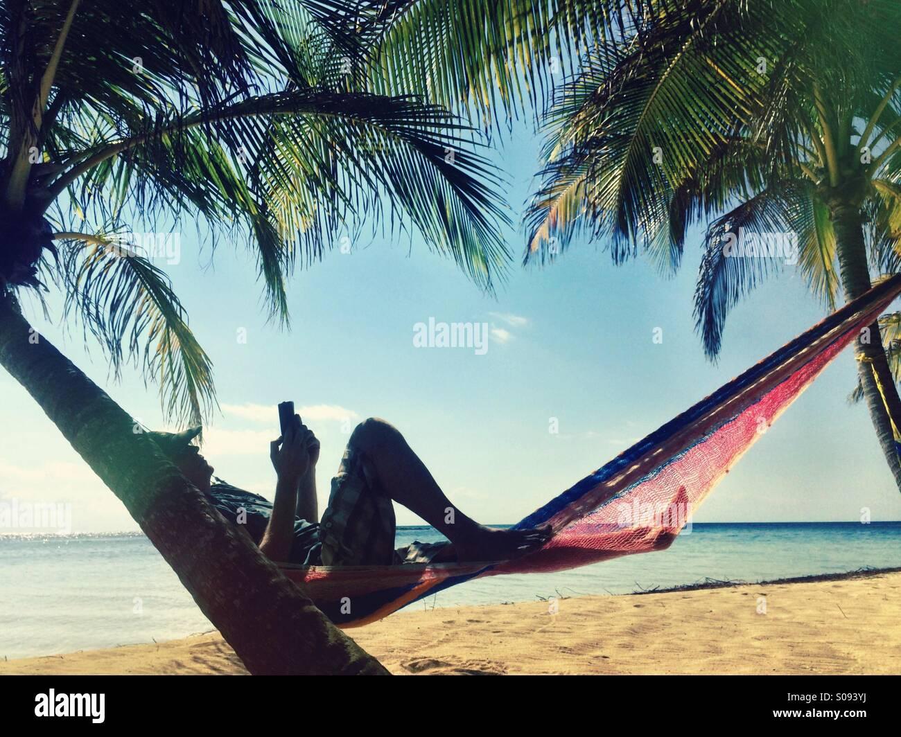 L'homme livre électronique commercial sous un palmier, Belize Photo Stock