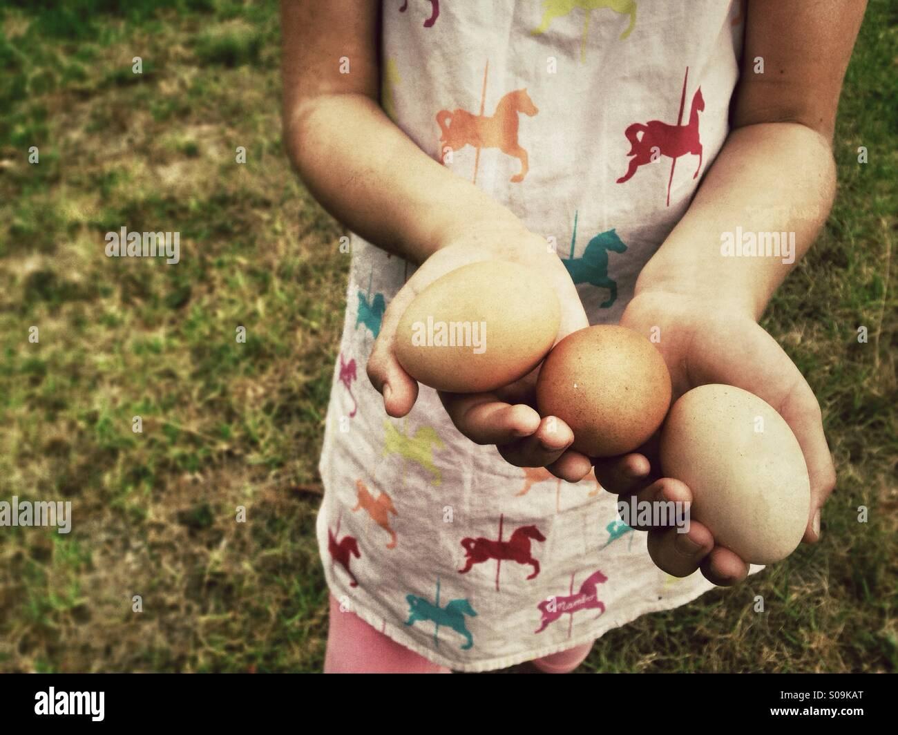 Trois œufs frais dans les mains d'un enfant. Photo Stock