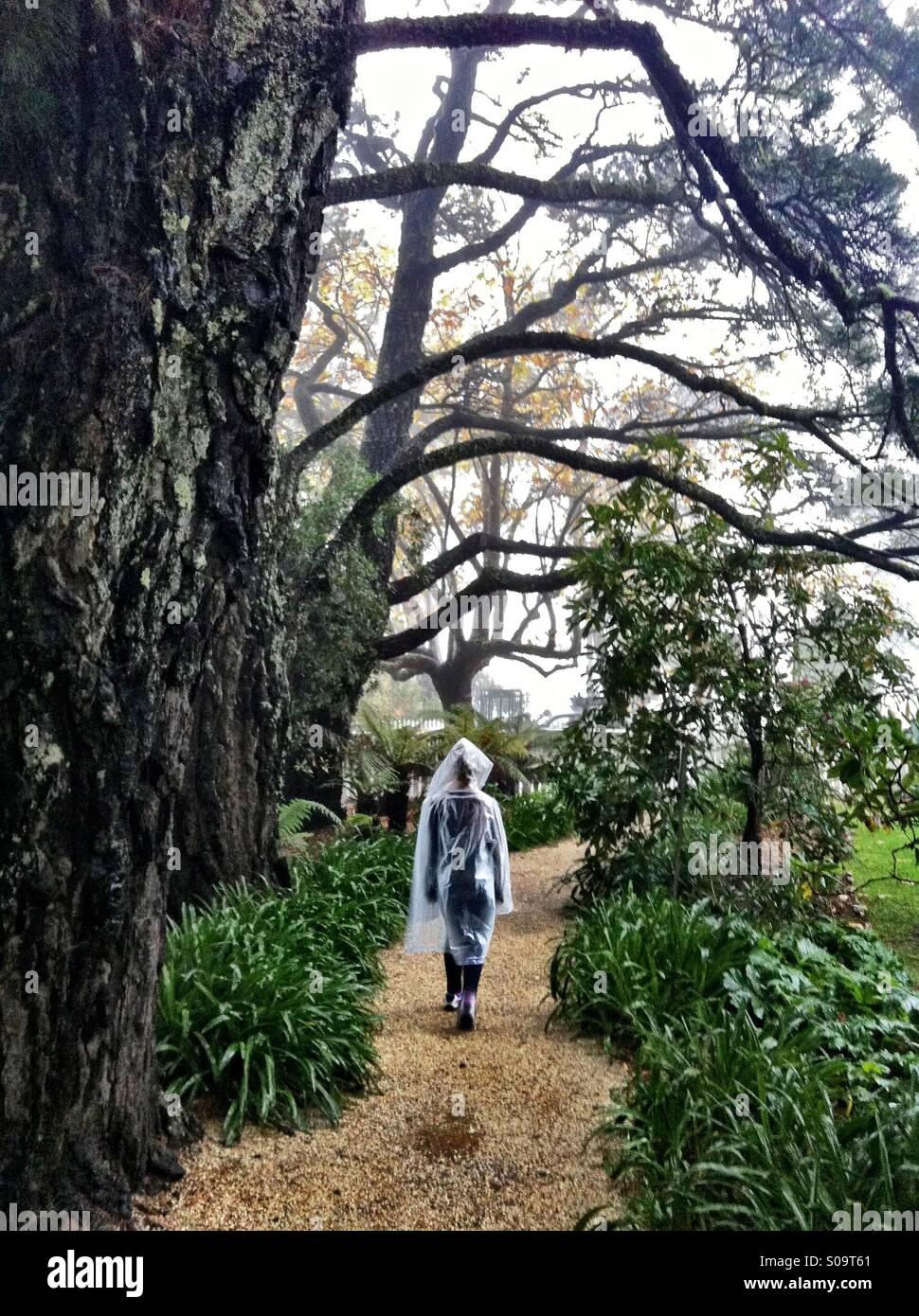 Lady une marche sous la pluie Photo Stock