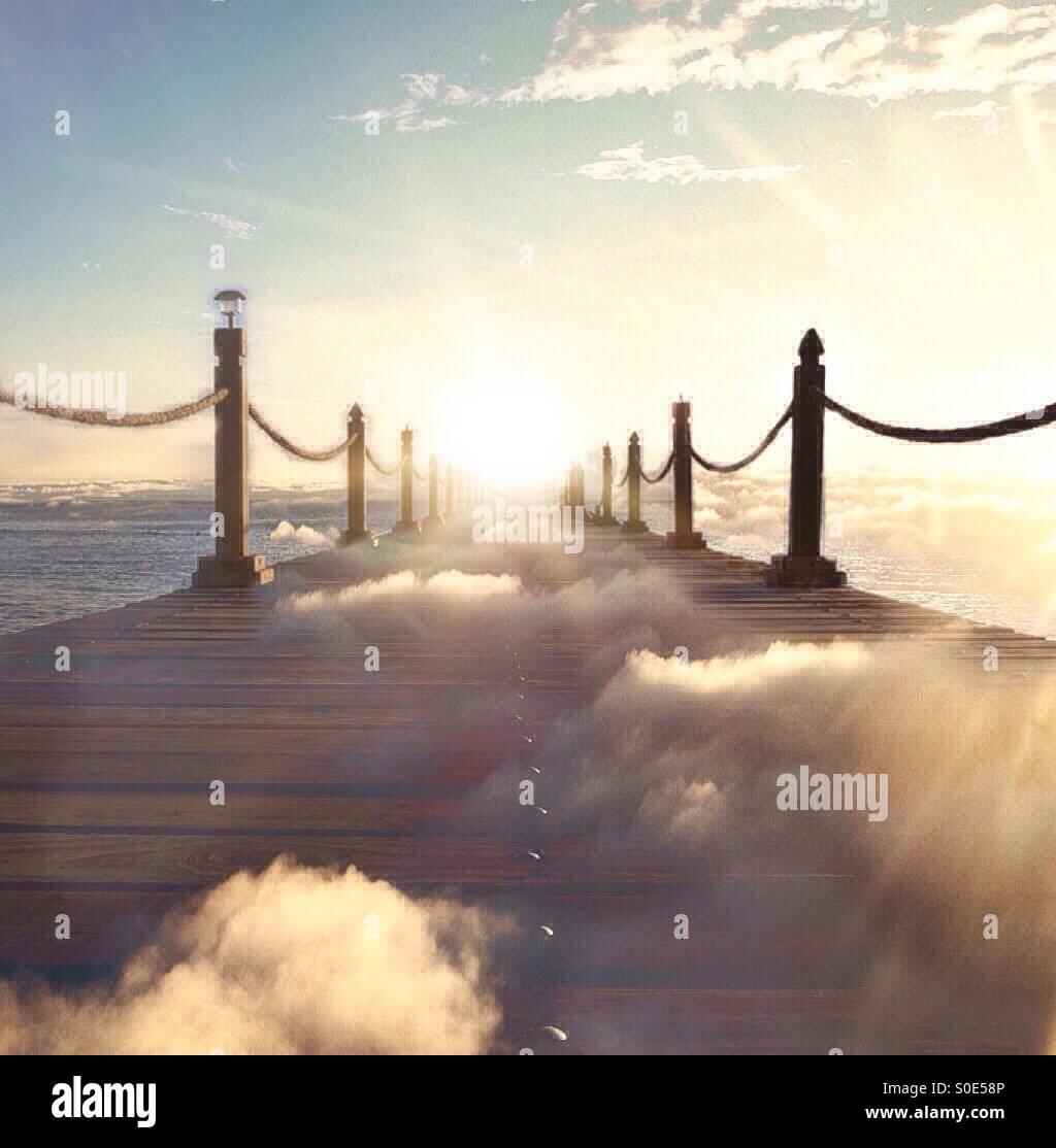 Suivre le soleil Photo Stock