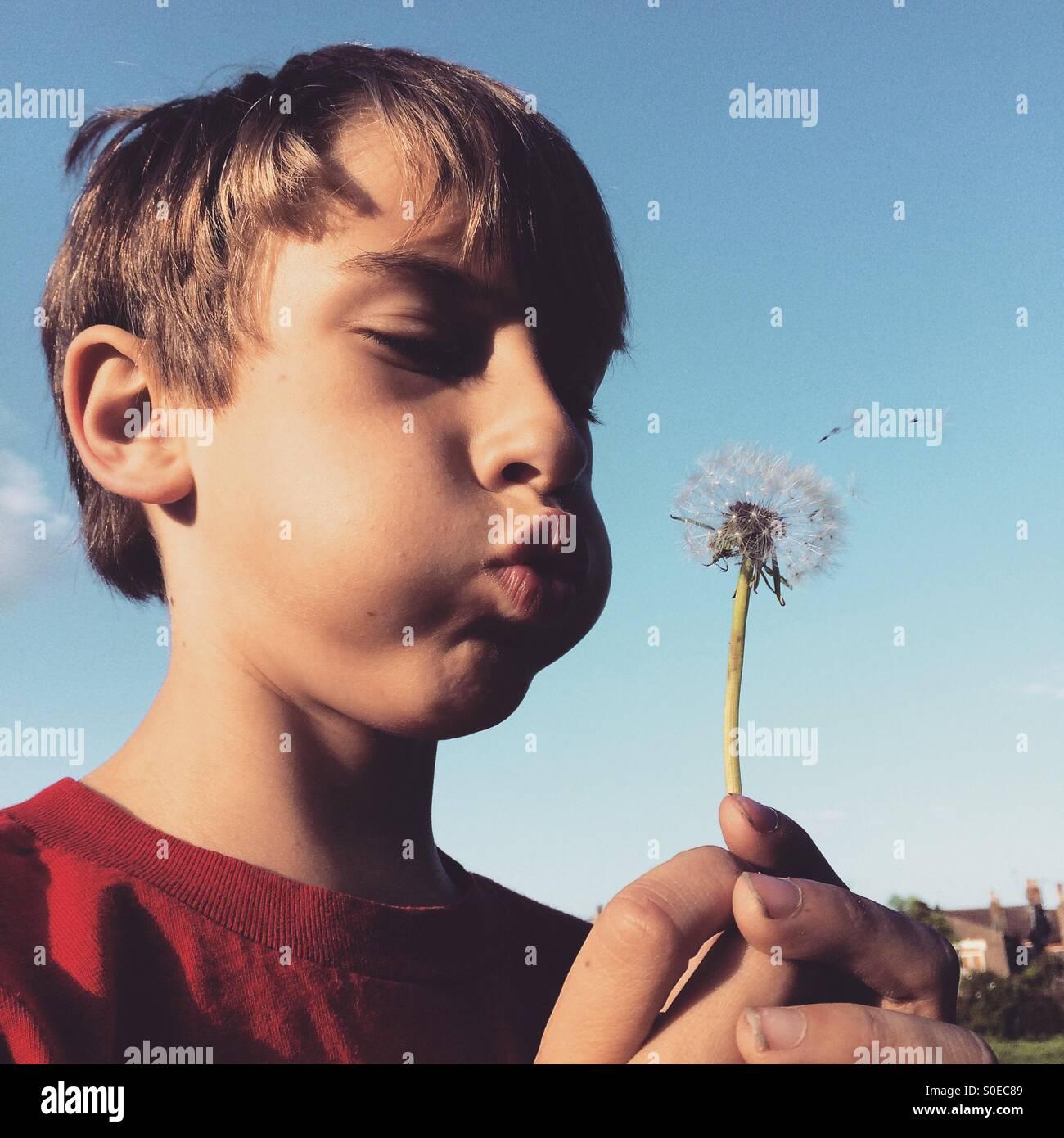Un jeune garçon soufflant un pissenlit. Photo Stock