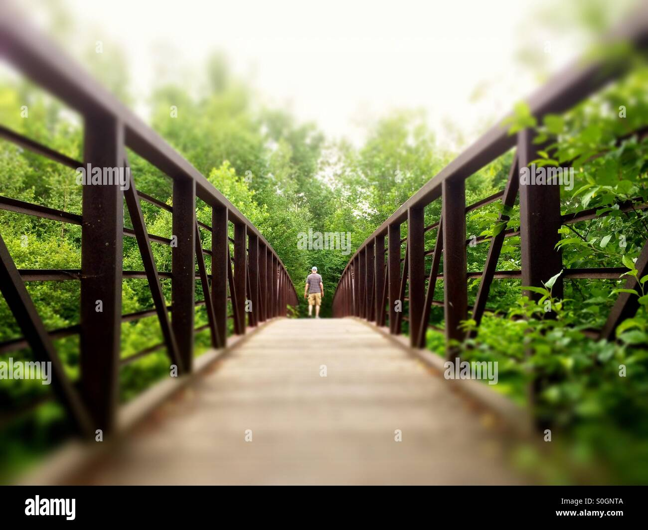 Homme marchant sur Stowe Recreation Path, Stowe, Vermont Photo Stock