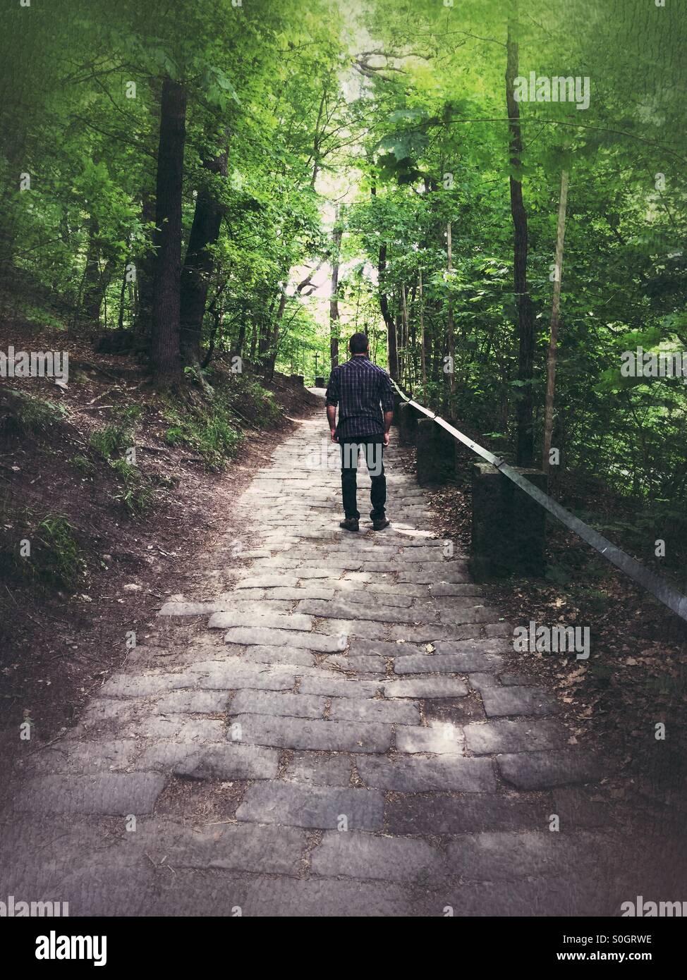 Homme dans le parc Photo Stock