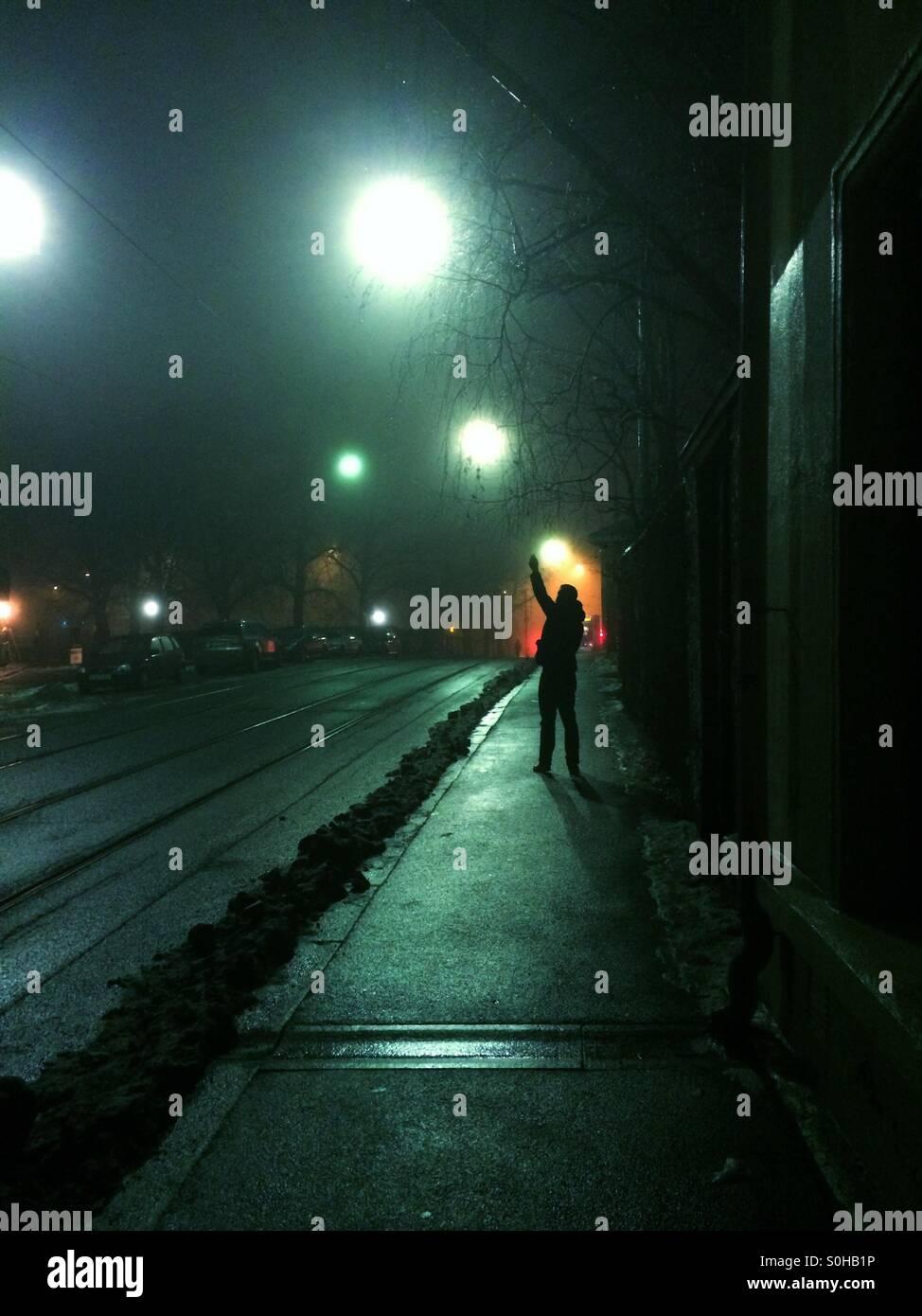 Nuits noires Photo Stock