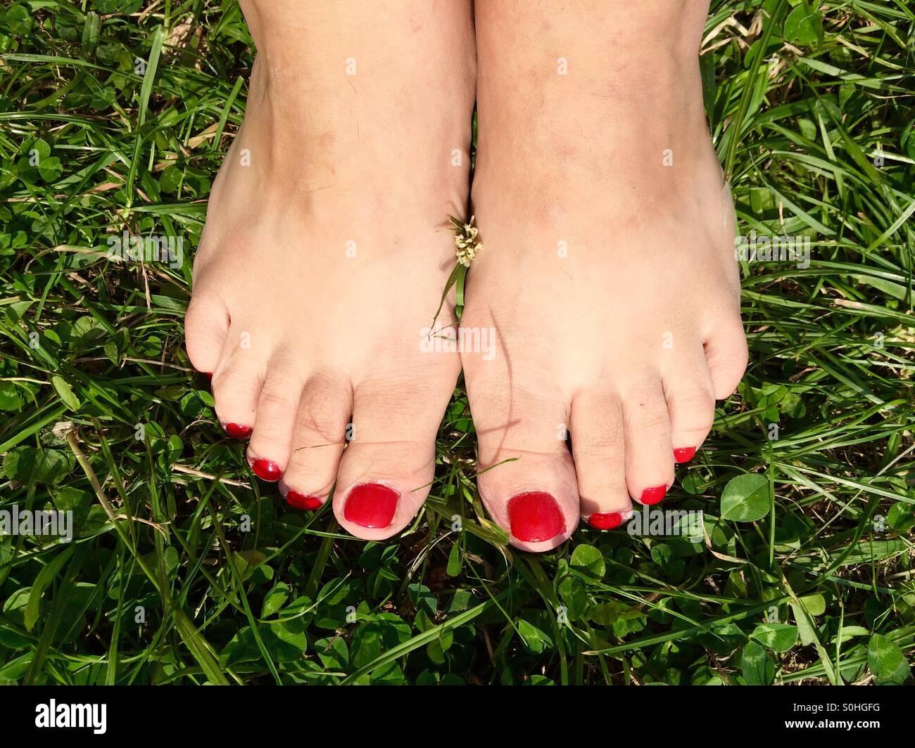Pieds de femme nue avec nailpolish rouge sur l'herbe Photo Stock