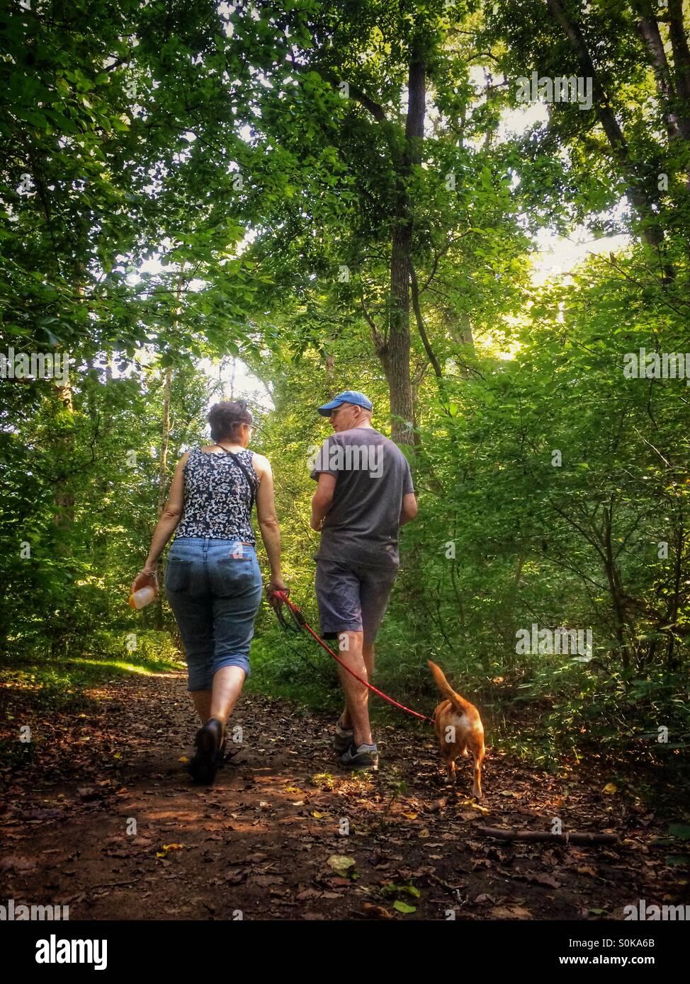 Couple walking dog dans les bois Photo Stock