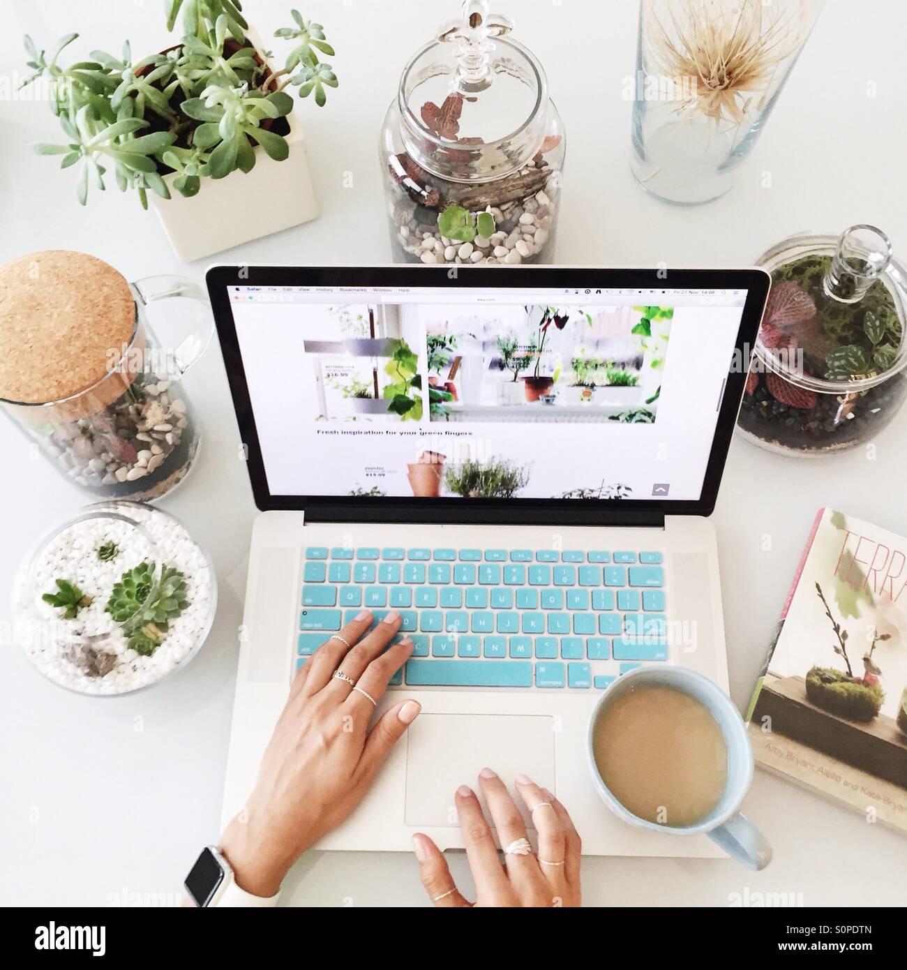 Travail sur le Mac avec une tasse de café entouré de terrariums avec plantes grasses et autres plantes Photo Stock