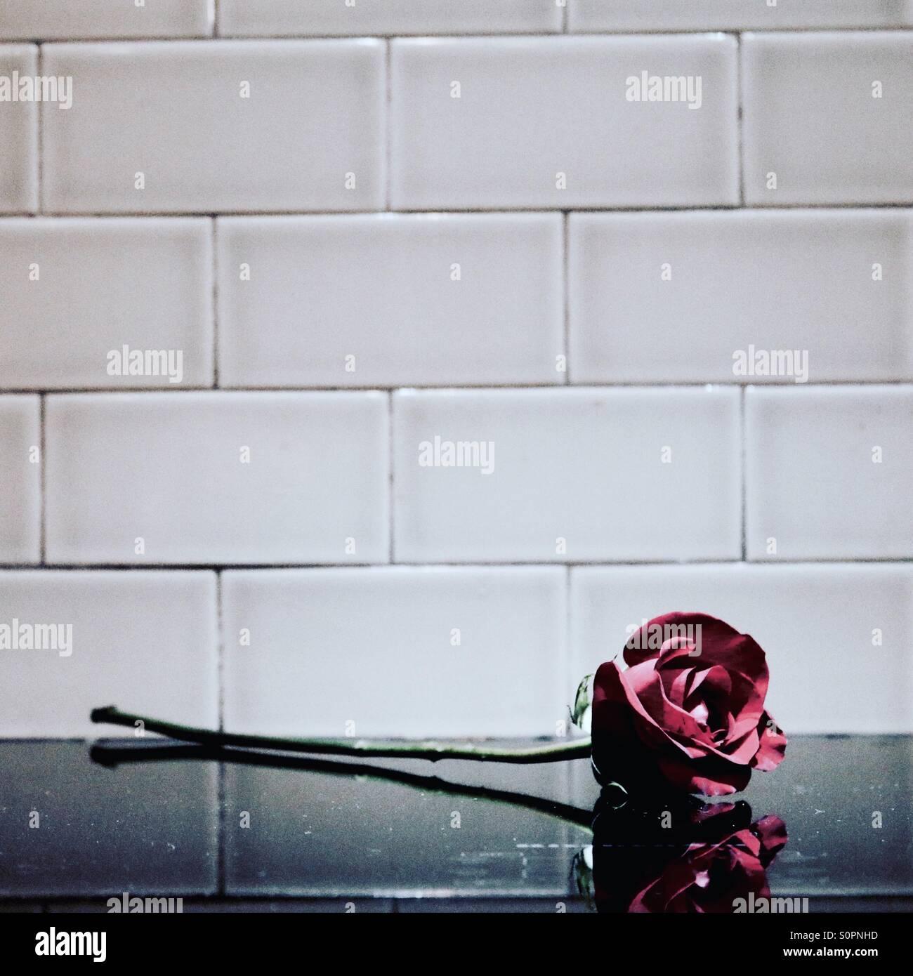 L'amour rose sur le dessus du compteur Photo Stock