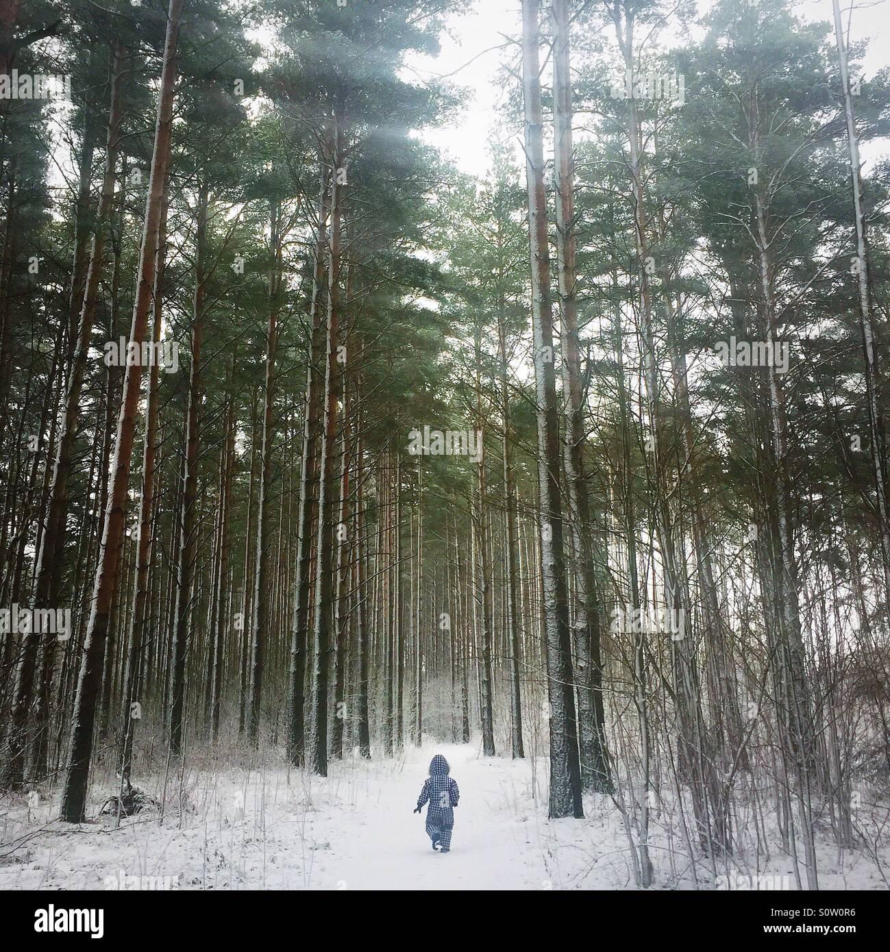 Petit enfant dans la forêt en hiver Photo Stock