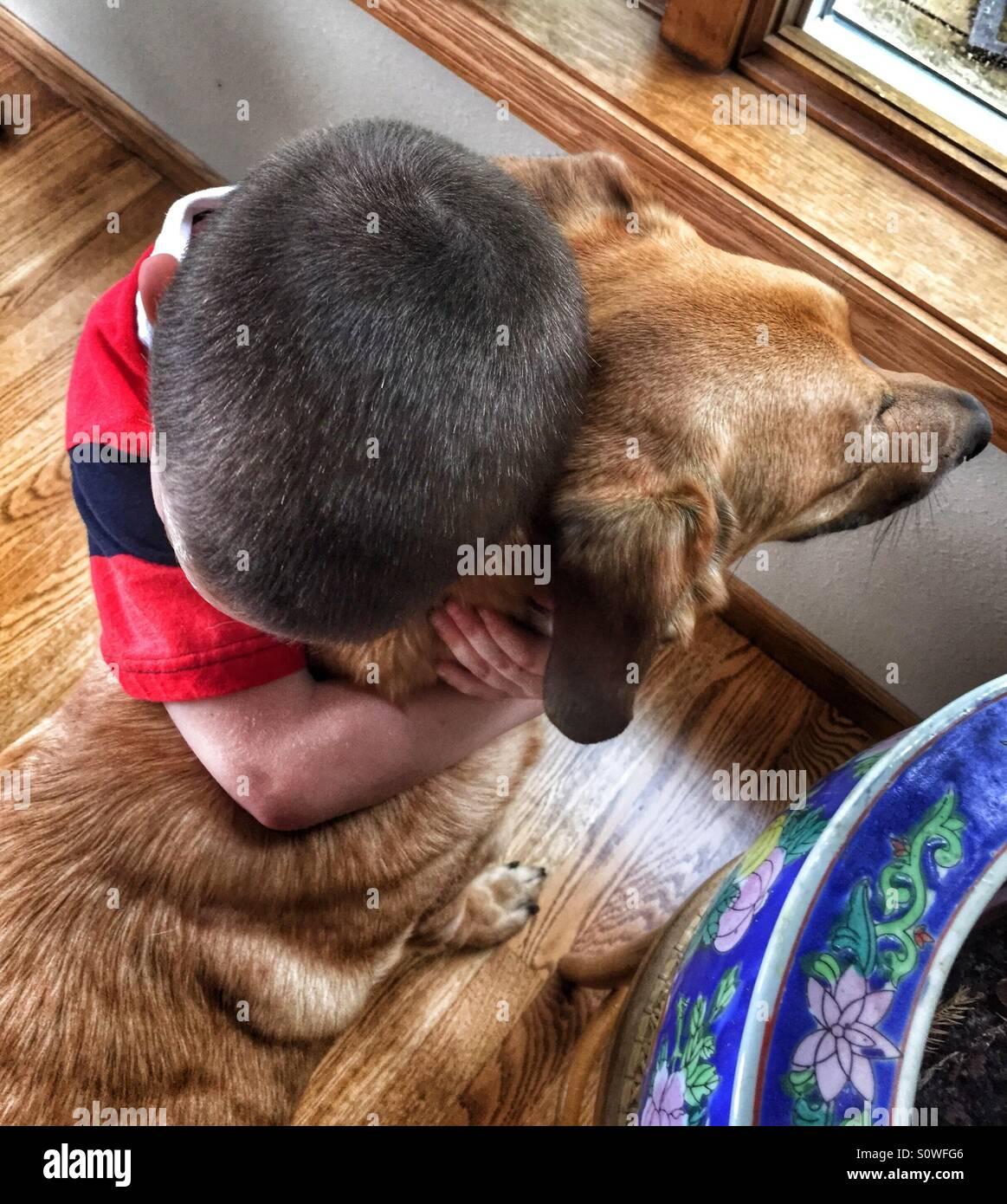 Young boy hugging son chien de compagnie Photo Stock