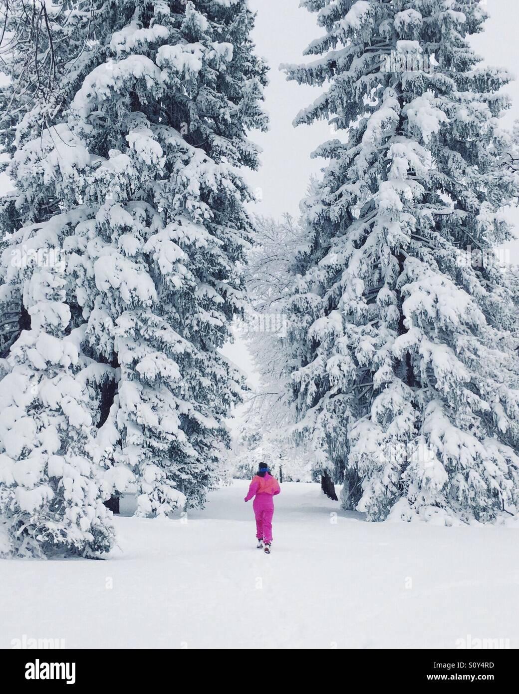 L'exécution dans la neige Photo Stock