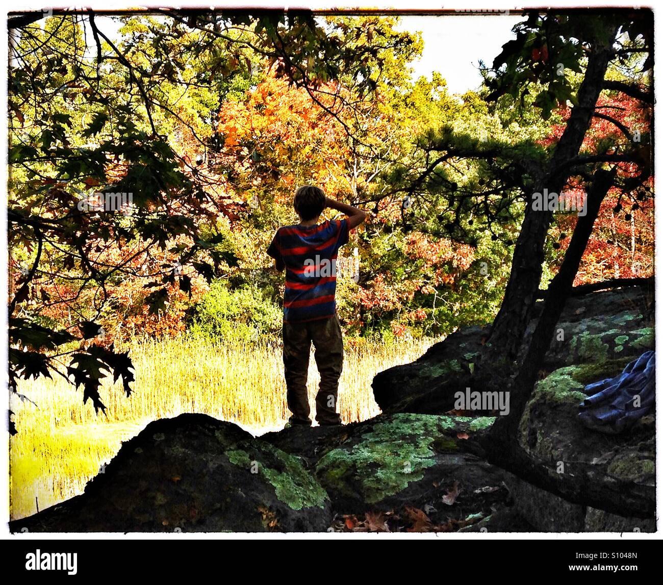 Teen boy regarde sur paysage d'automne. Feuillage d'automne, la Nouvelle Angleterre. CT, USA Photo Stock