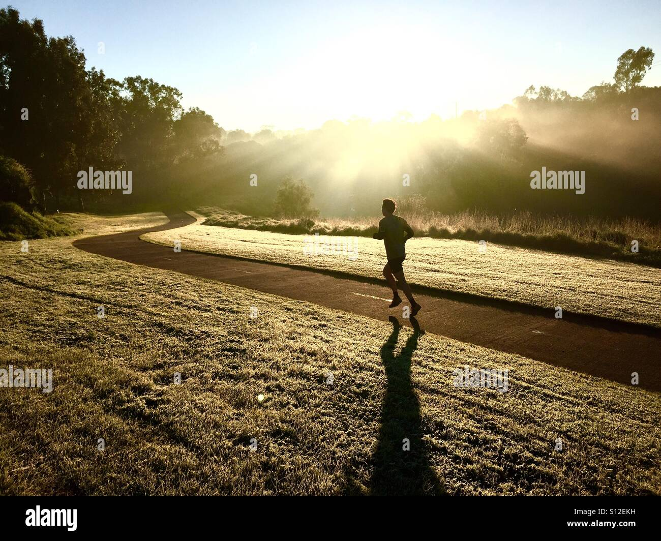 Un homme traverse la lumière tôt le matin dans la région de Clifton Hill, Melbourne, Victoria, Australie Photo Stock