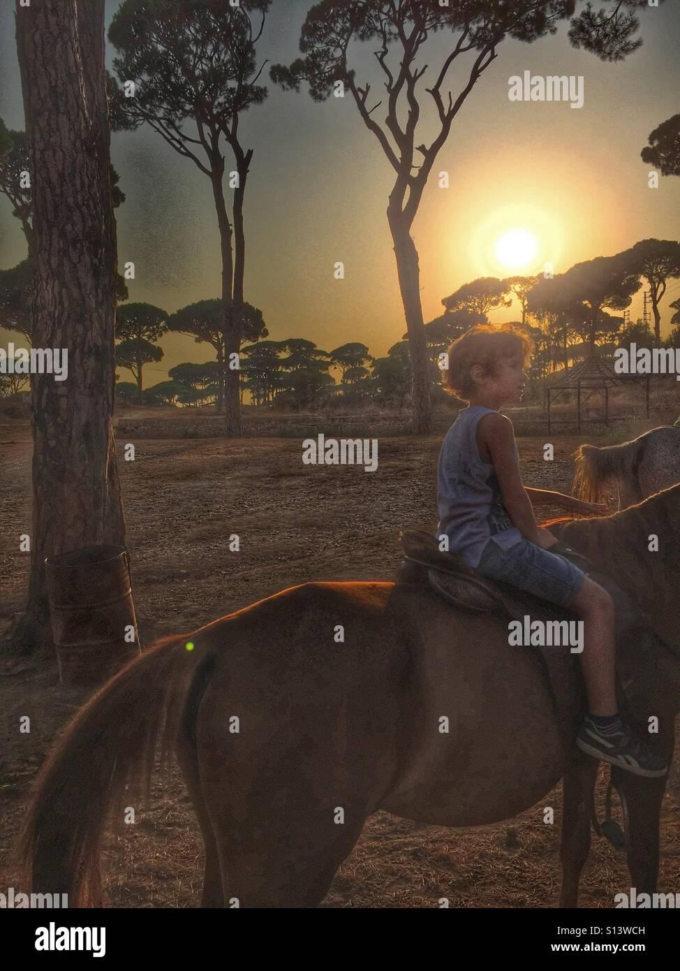 Garçon enfant montant un cheval au coucher du soleil Photo Stock