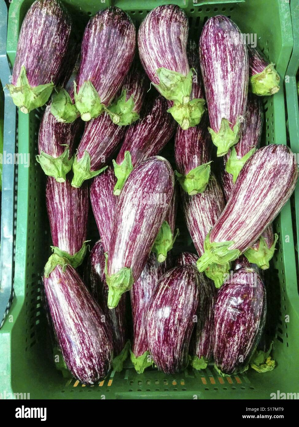 Aubergines à la vente. Photo Stock