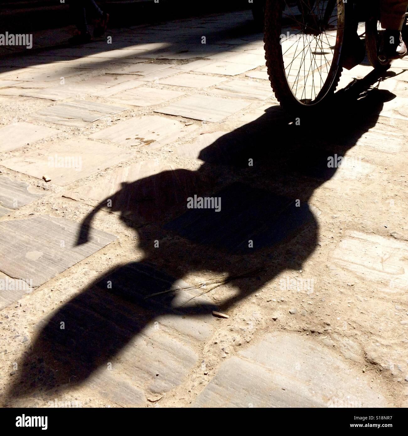 Ombre d'un vélo Banque D'Images