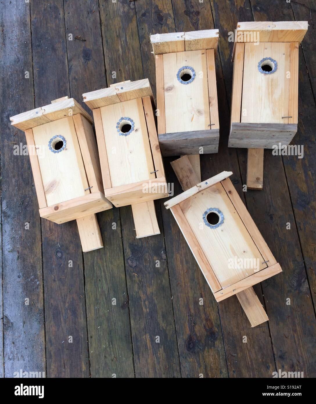 Fågelholkar i trä Banque D'Images
