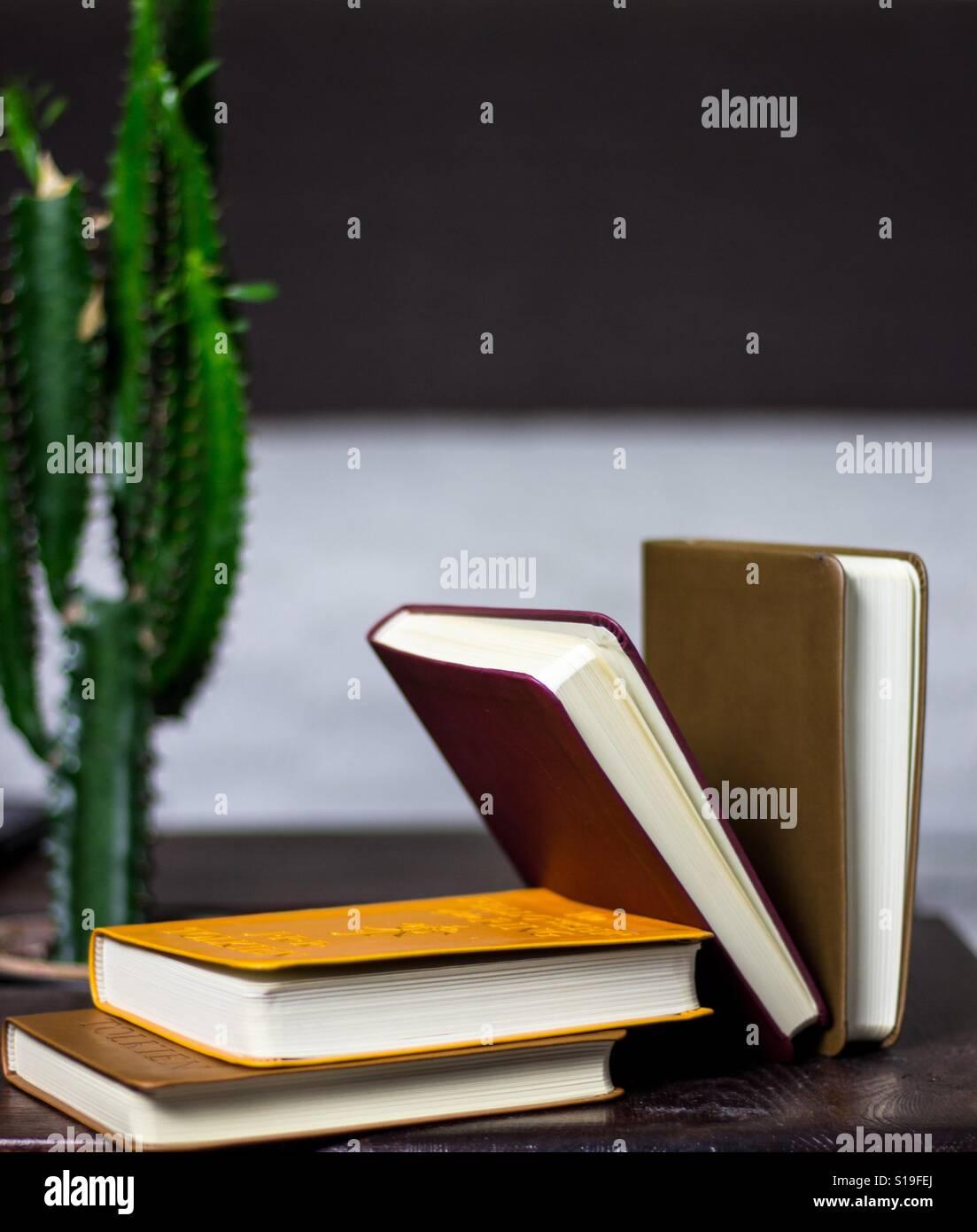 BookCollection Banque D'Images