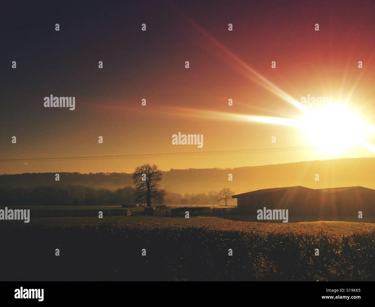 Coucher du soleil au-dessus des champs Banque D'Images