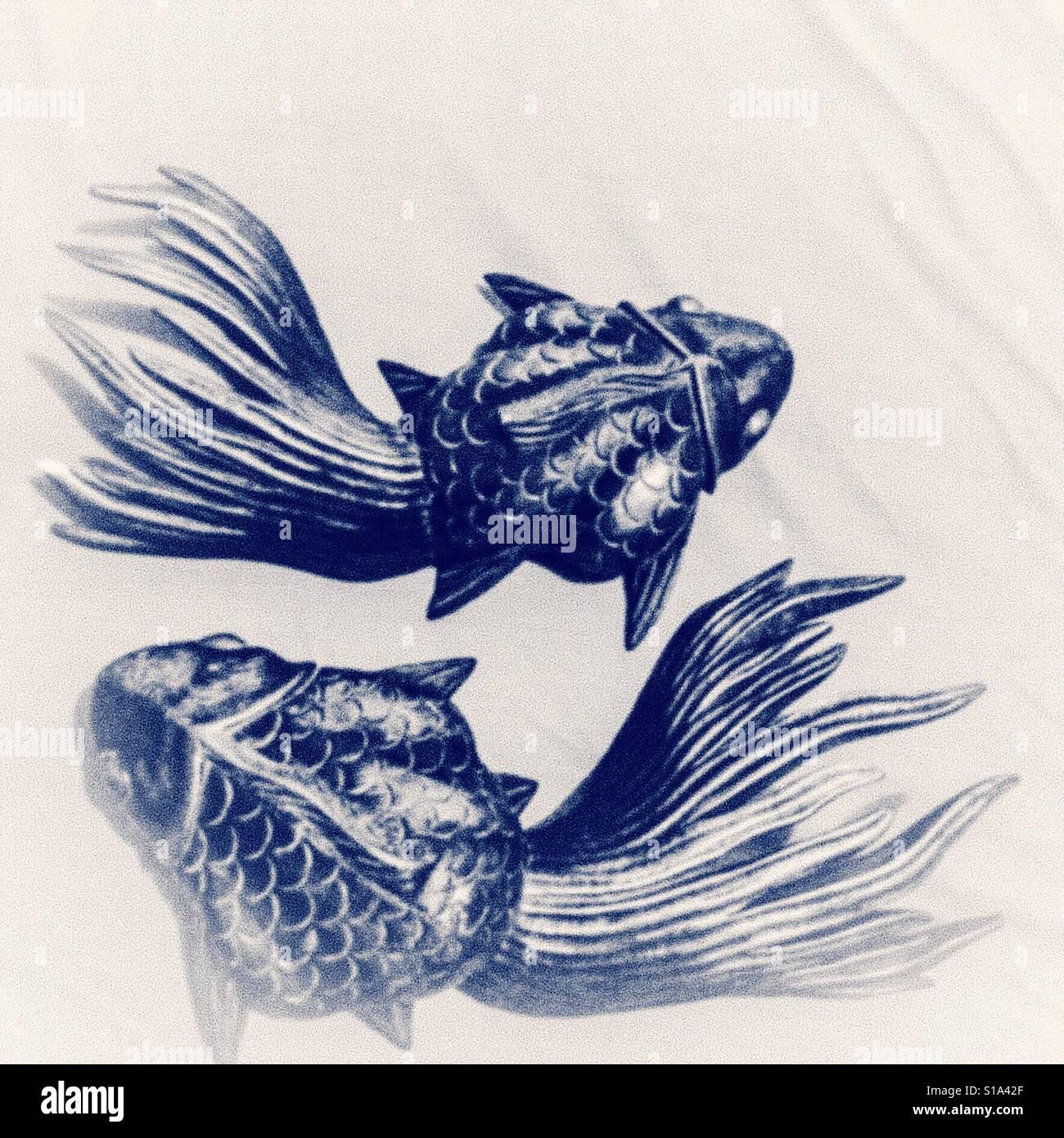 Article conception de poisson Banque D'Images