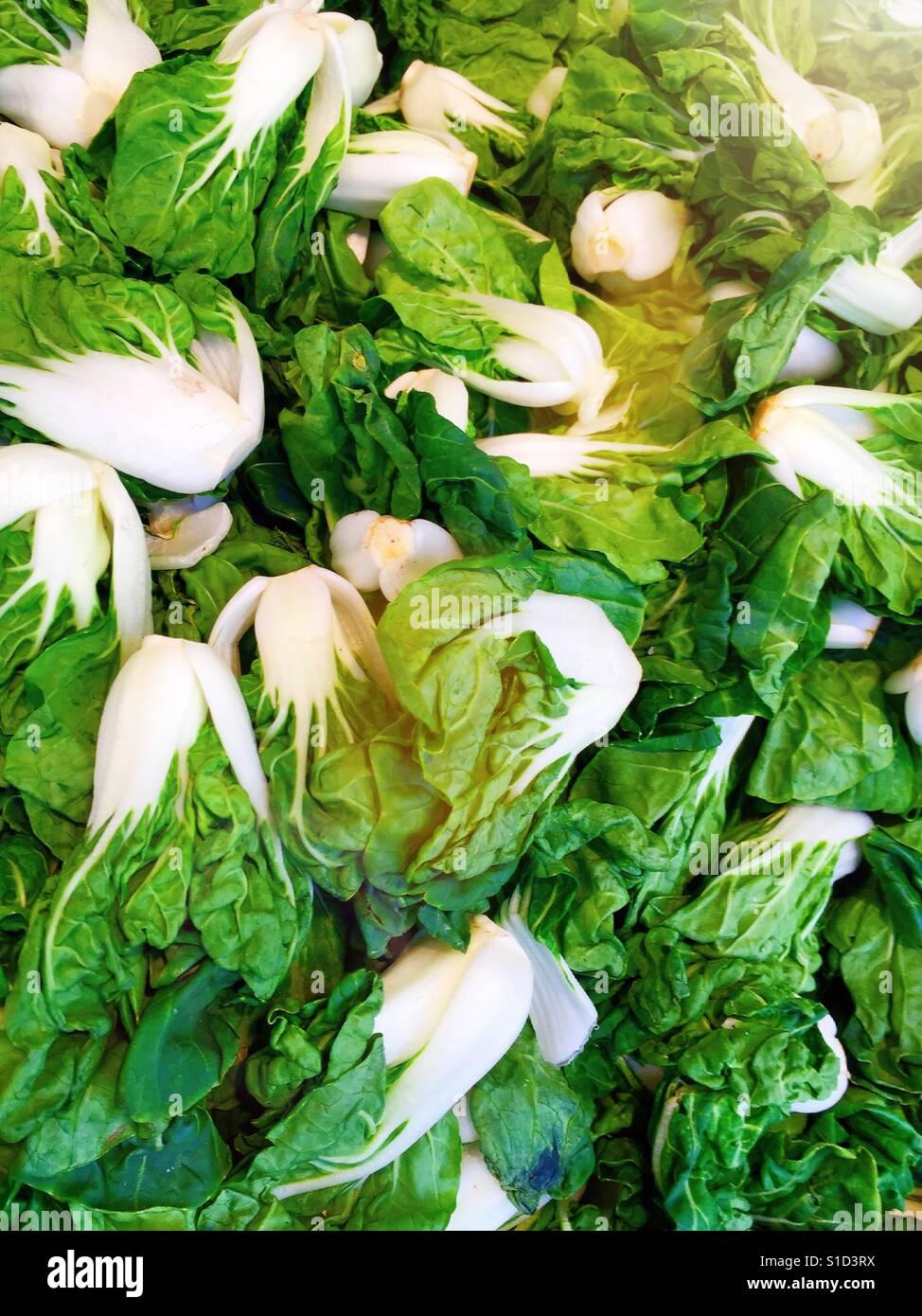 Légumes chinois Bok choy à vendre au stand dans le quartier chinois, NYC, USA Photo Stock