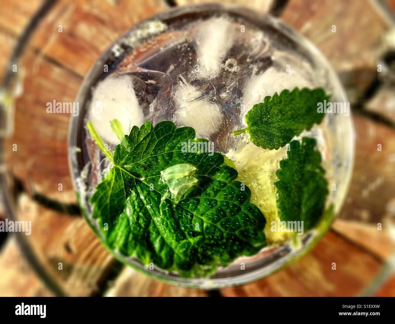 Gin Tonic faite avec de la chaux, de mélisse apple (qui était magnifique) et de tonnes de glace. Tellement Photo Stock