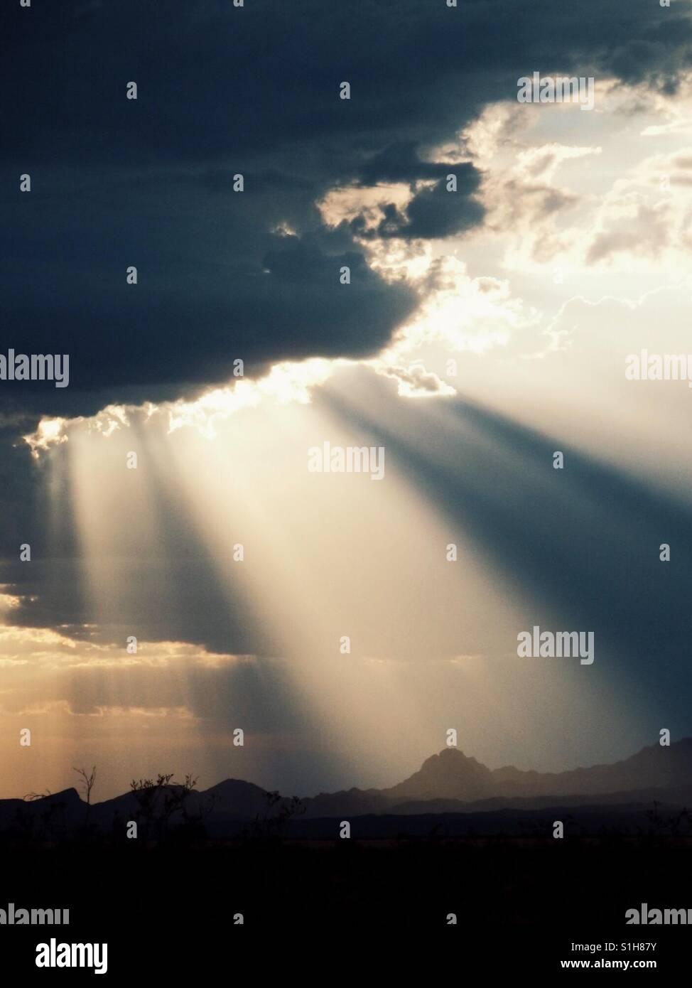 Rayons de soleil Photo Stock