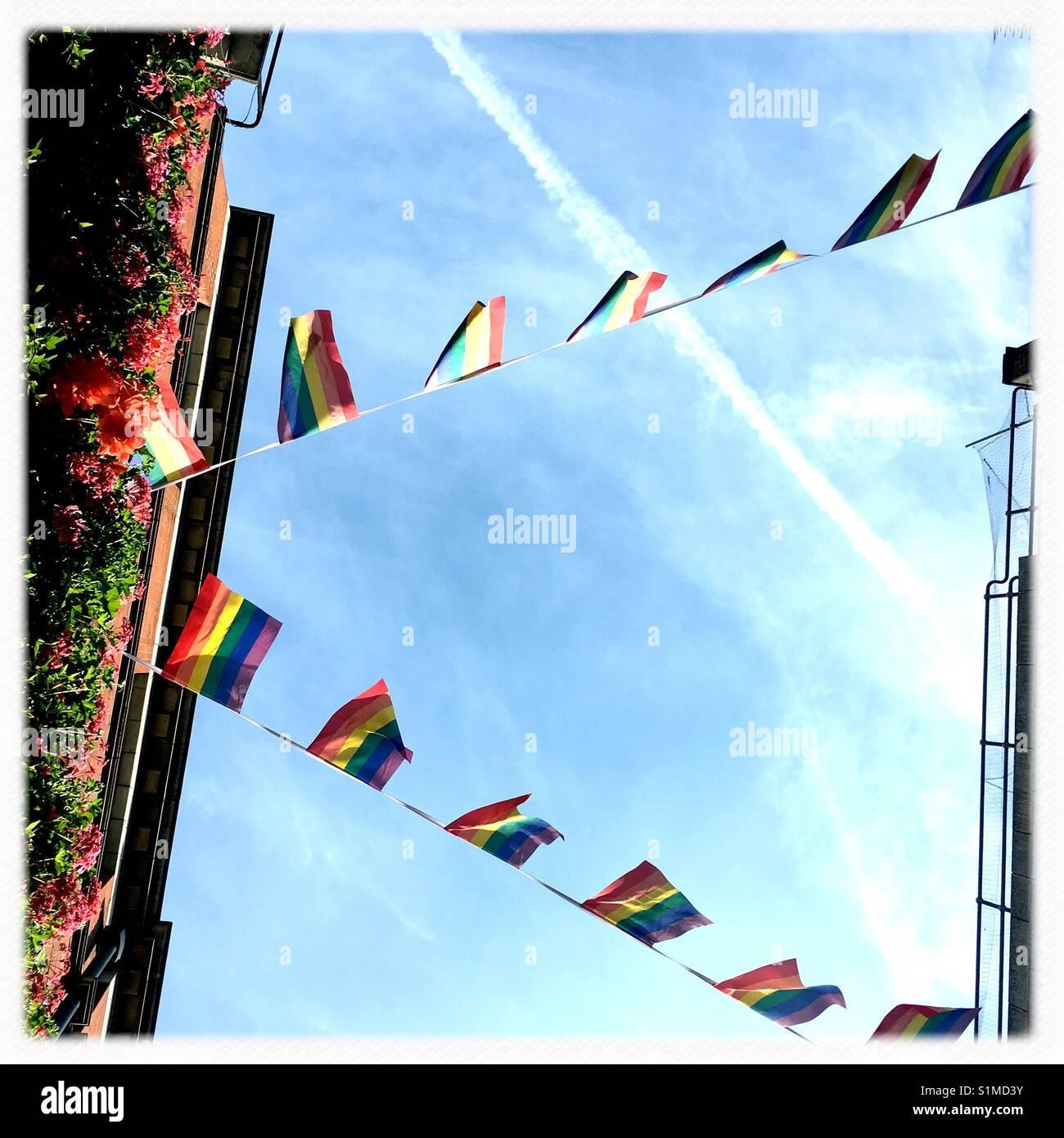 Drapeaux arc-en-ciel pride Photo Stock