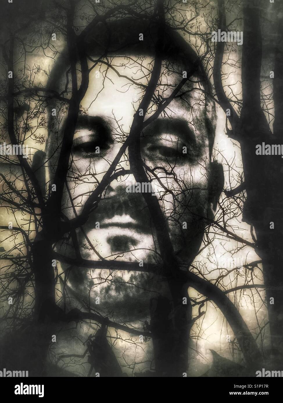 L'exposition de plusieurs mâles adultes conceptuel un visage derrière les branches d'arbres noueux. Banque D'Images