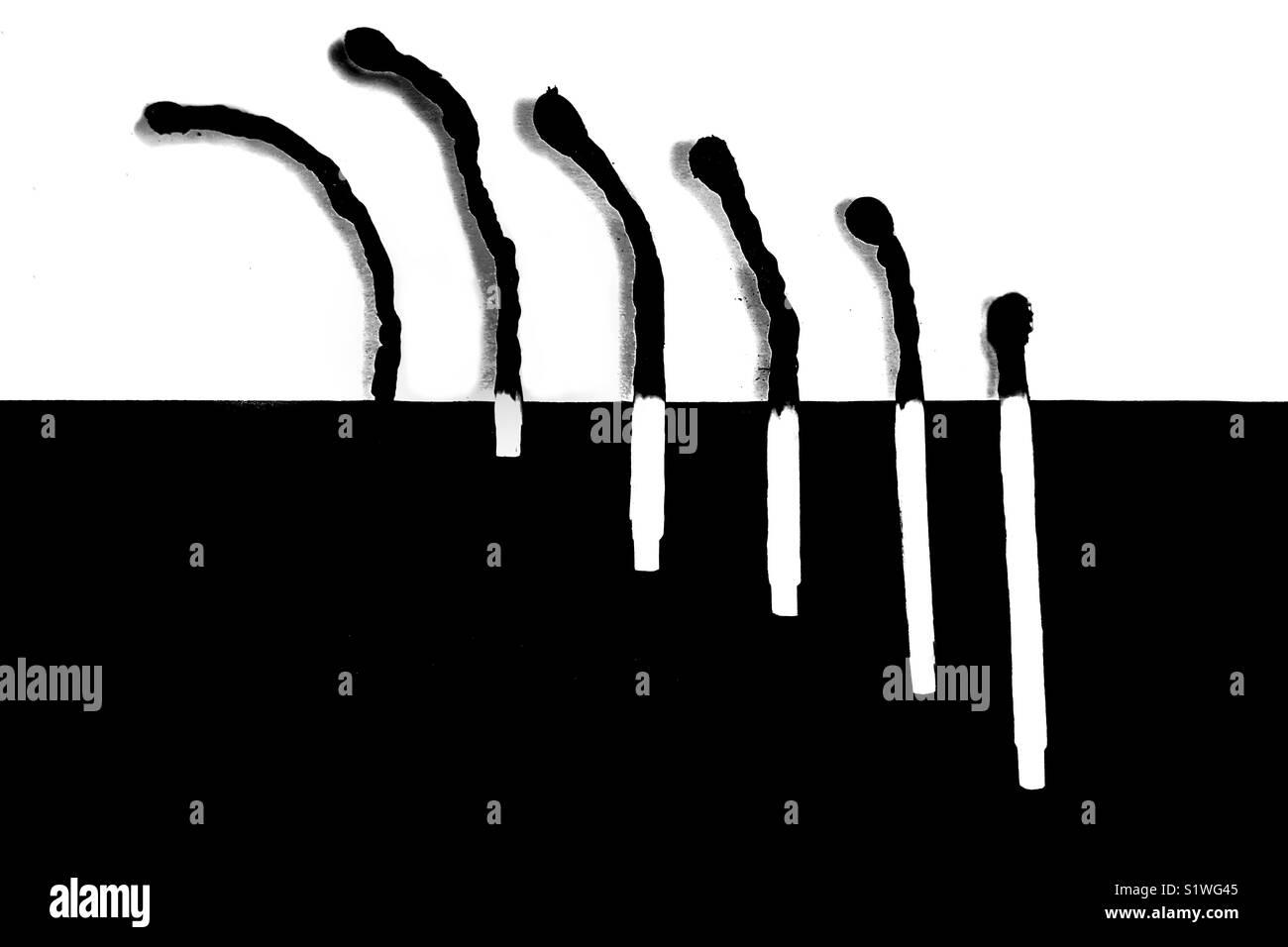 La vie et la mort en noir et blanc Photo Stock