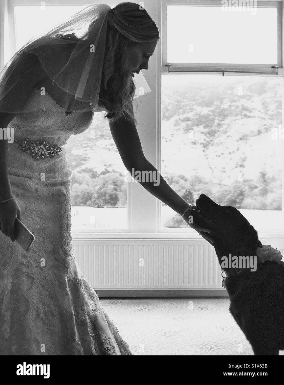 Un meilleur ami de brides Photo Stock