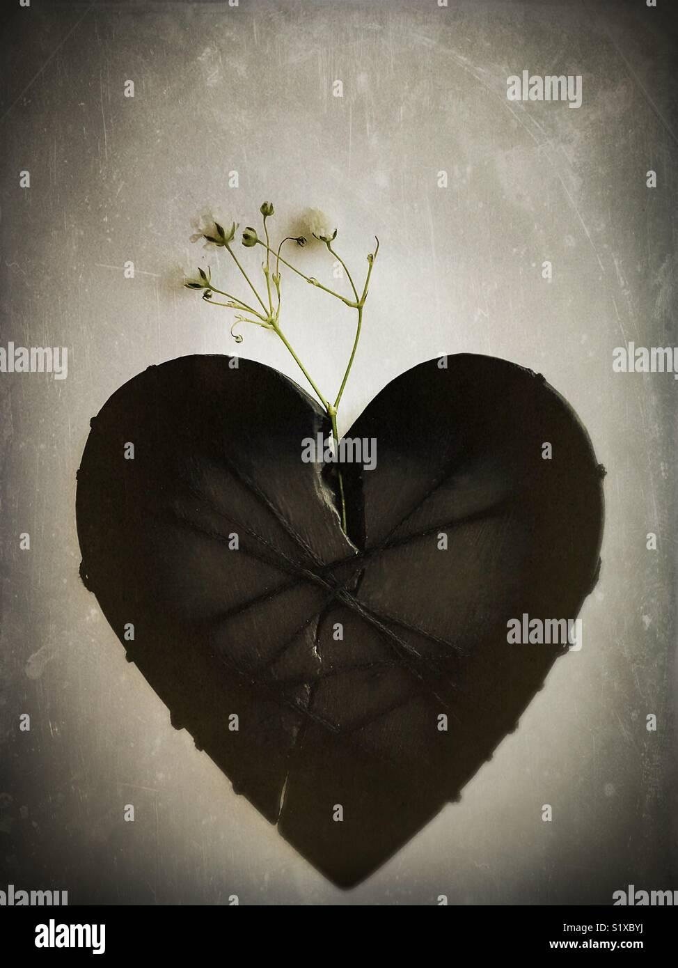 Un cœur brisé sur la voie de la guérison. Photo Stock