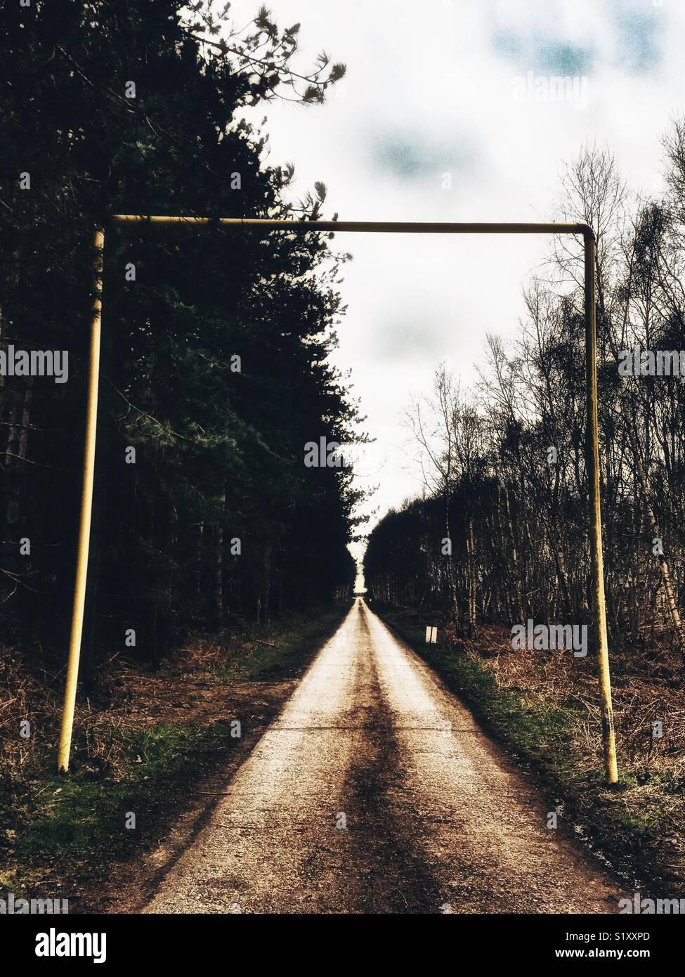 La voie de la porte Est, Rendelsham forest, Suffolk, Angleterre. En 1980 un incident OVNI aurait eu lieu près Photo Stock